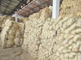 Centre reduces raw jute stock limit further   to prevent hoarding and improve supply