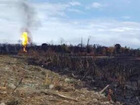 Assam gas well killed, fire fully   doused after over five months