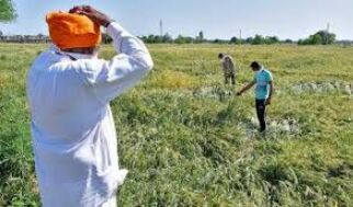 State to set up training centre to help farmers handle heavy machineries
