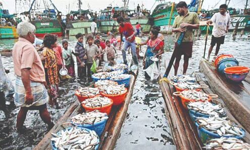 Over Rs 3.5K cr seafood exported in 2020-21