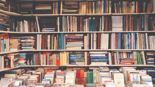 Steps taken to develop infra & hire staff for rural libraries