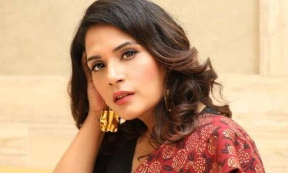 I have been on fringes of this industry, dont think they understand me: Richa Chadha