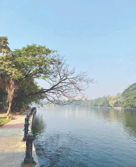 KMDA takes steps to prevent death of fishes, monitor dissolved O2 level at Rabindra Sarobar